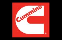 cummin3